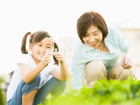 シロツメクサを見る祖母と孫