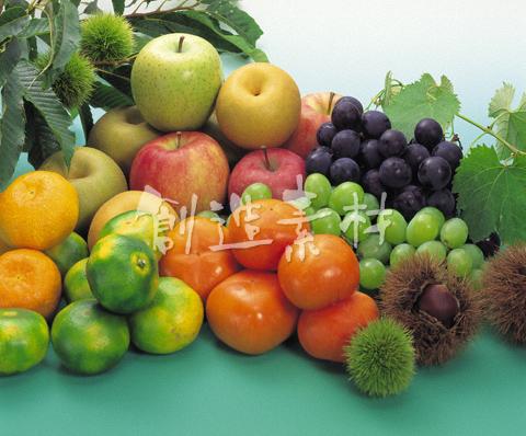 果物と木の実