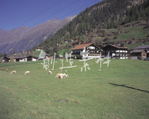 オーストリアの牧場