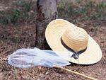 麦わら帽子と虫取り網