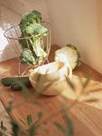 野菜とサラダボウル
