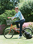 自転車に乗る女性とパグ