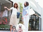犬とショッピングをする二人の女性