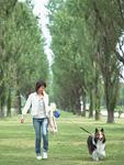 イヌと散歩
