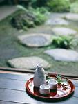 日本酒と庭