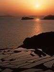 棚田と夕日