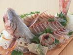 鯛の姿造り
