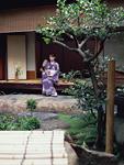 縁側に座る着物の女性と庭