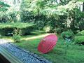 タイトル:宝泉院の庭と番傘