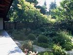 宝泉院の庭