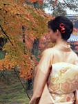 紅葉の樹木と着物姿の女性