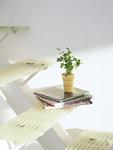 鉢植えと本