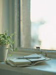 システム手帳と鉢植え