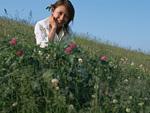 女性と花畑