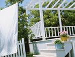 庭の鉢植えと洗濯物