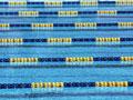水泳/コースロープ