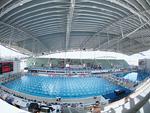 水泳/競技場