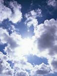 逆光と綿雲