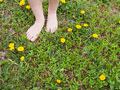 草むらと足