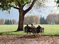 秋の日の公園