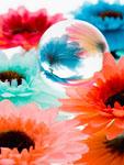 球体に映る花