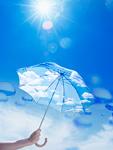 太陽と日傘