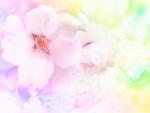 花イメージ(CG)