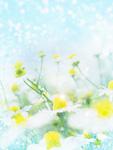 春イメージ(CG)