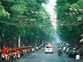 北京の車道