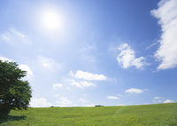 青空と草原
