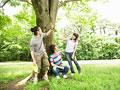 木陰で休憩する若者