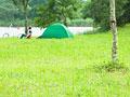 芝生のテント