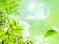 地球儀と樹木