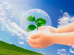 芽を持つ子供の手