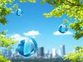 樹木と市街地