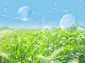 草原と地球儀