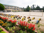 校庭の花壇