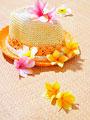麦藁帽子とプルメリア