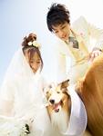 犬と新郎新婦