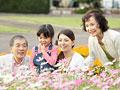 花を見る三世代家族