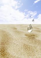 砂漠に水滴