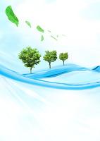 水面の木立と葉