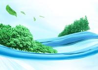 水面の森林と葉