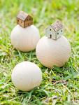 木球とミニチュアの家