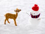 雪だるまと子鹿