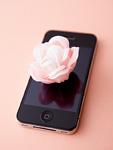 スマートフォンと花