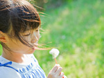 タンポポの綿毛を吹く女の子