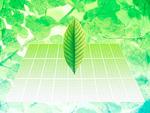 クリーンエネルギーイメージ