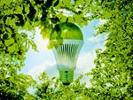 LED電球と新緑