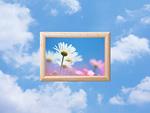 青空と額縁の中の花